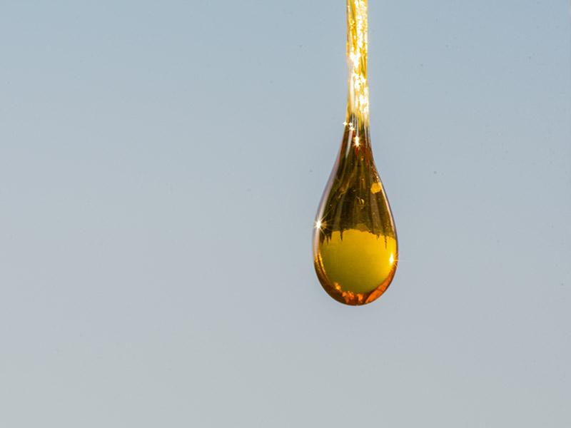 cbd olie kopen
